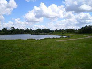 3 étangs 2